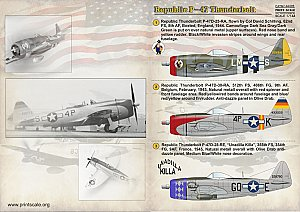 Republic P-47 Thunderbolt 1/144 Print Scale 14405