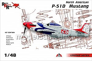 North American P-51D Mustang 1/48 AMG 48501