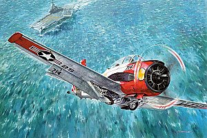 North American T-28C Trojan NAVY version 1/48 Roden 451